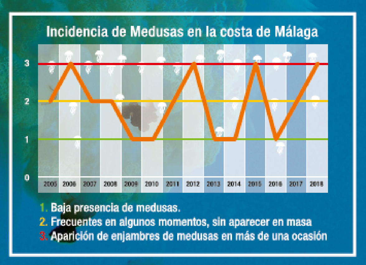 Grafico de incidencia de Medusas